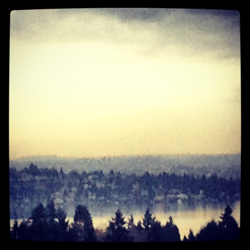 lake washington drizzle