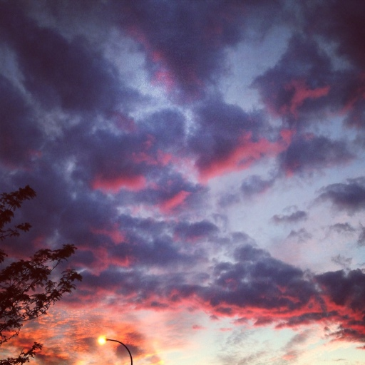 evening's sky