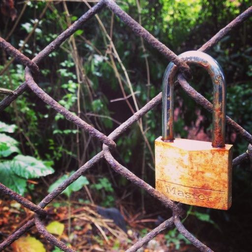 chain link…locked